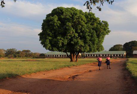 Two girls walking home from school in Pajule sub county, Pader district in North Uganda  Photo: UN Habitat/Grace Kibunja