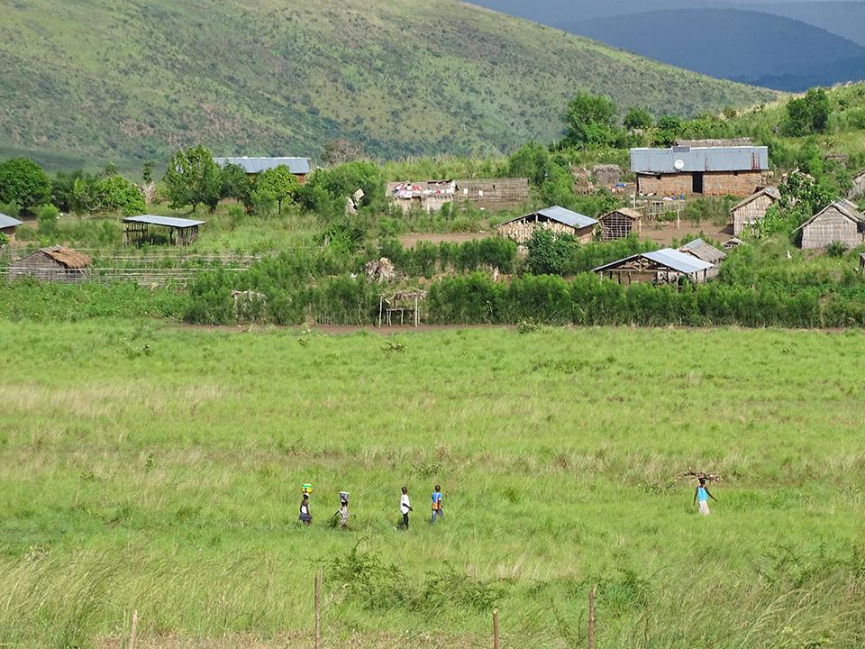 Land reform support programme